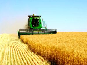 В #Зимбабве появилась заинтересованность к приобретению сельхозтехники #России.