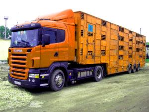 С 23 сентября вводятся временные ограничения на поставки продукции белорусской фабрики «Дружба»