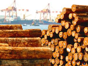 Таможенную пошлину на древесину могут снизить до 6,5%