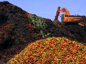 Новая санкционная продукция поставляемая из Белоруссии