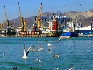 Японские перевозчики объединяют контейнерные перевозки